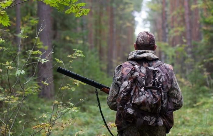 Мисливський сезон на Ямпільщині розпочнеться 12 серпня
